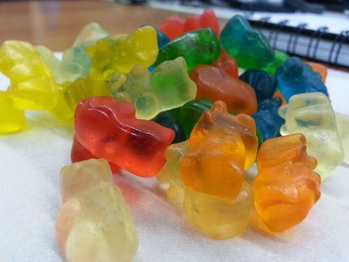 finni gum teddies