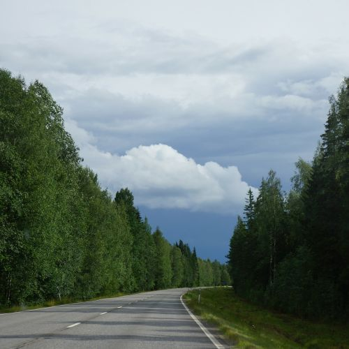 finnish summer road