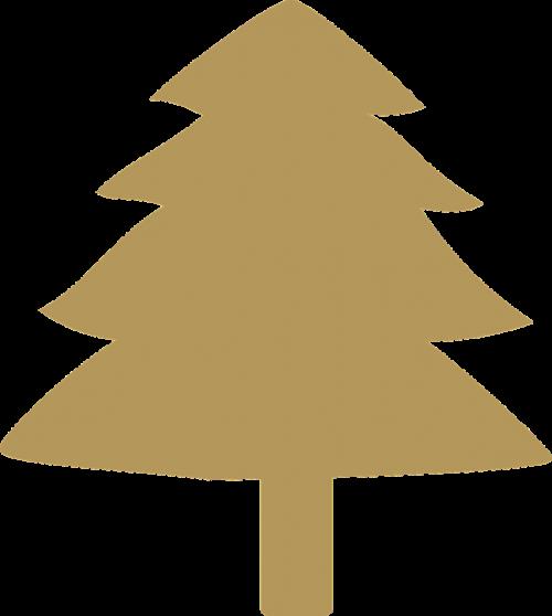 fir tree evergreen fir