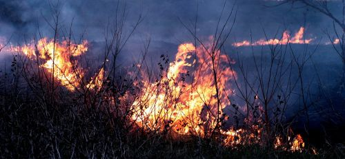 Ugnis,dūmai,liepsna,raudona,nelaimė,apokaliptinis,siaubas