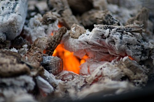 fire wood charcoal burning