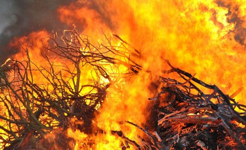 fire bonfire flame