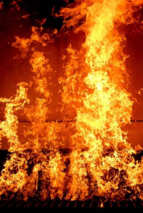 fire burn house training