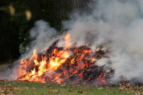 fire smoke bonfire