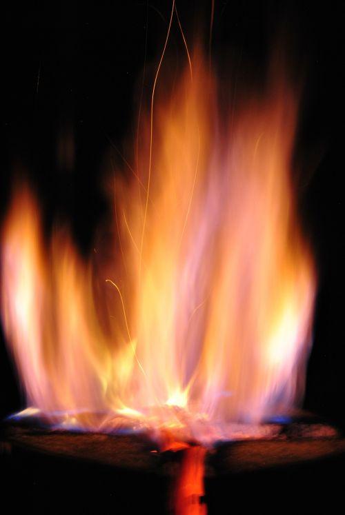 fire sweden fire burning tree trunk