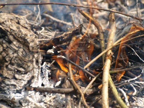 fire embers ash