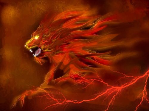 fire lion flame