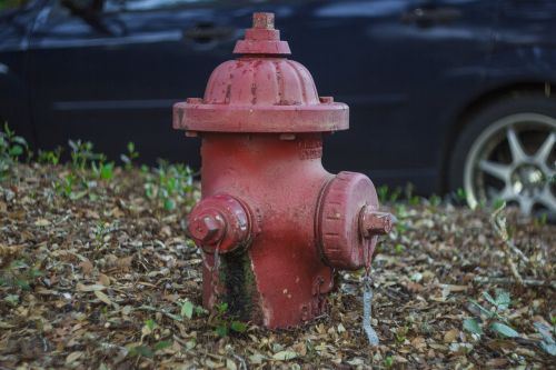 fire hydrant hydrant red