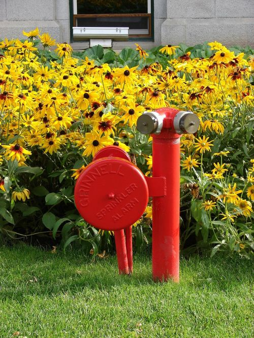 fire hydrant hydrant stand pipe