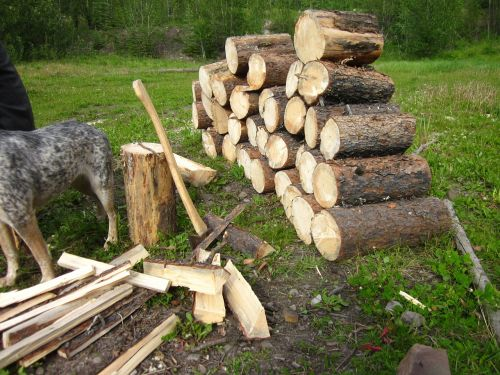 fire wood wood pile