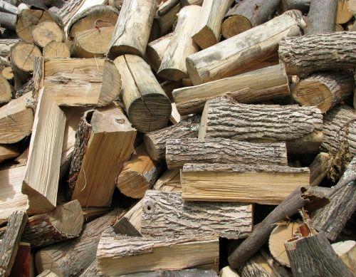 firewood ash bitternut hickory