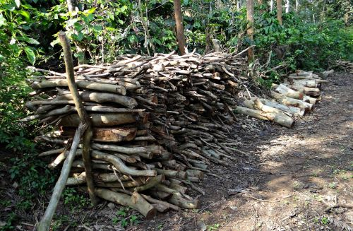 firewood fuel stack