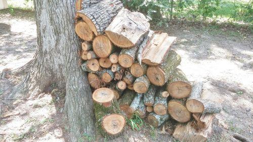 firewood wood wood pile