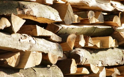 firewood nature landscape