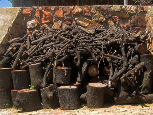 Firewood Logs Against Wall