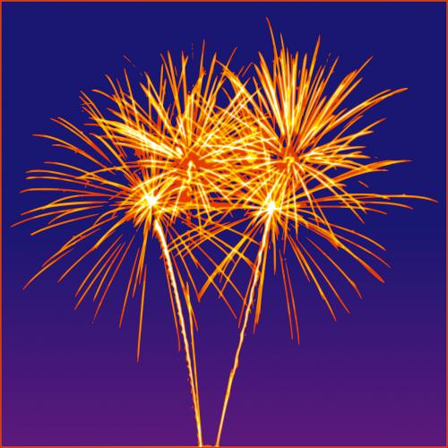 firework rockets sylvester