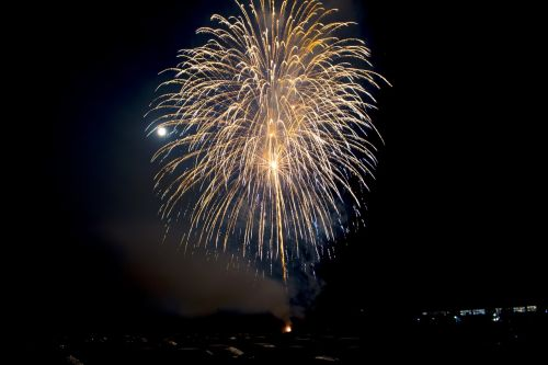 fireworks folk festival pleasure