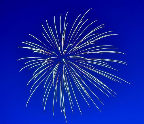 fireworks celebration happy