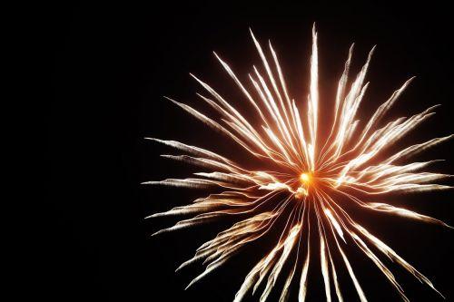 fireworks shape flower