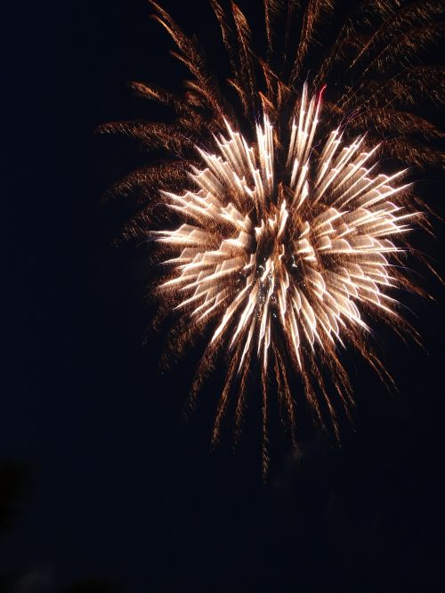 fireworks crackers sylvester