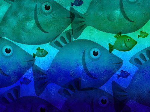 fish animal aquatic