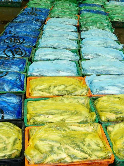 fish plastic packing