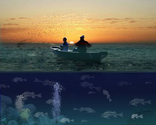 fish fischer boot