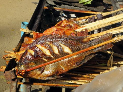 fish grilled food