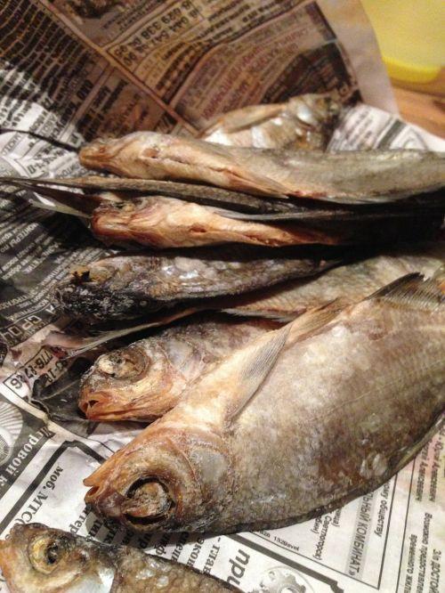 fish newspaper food
