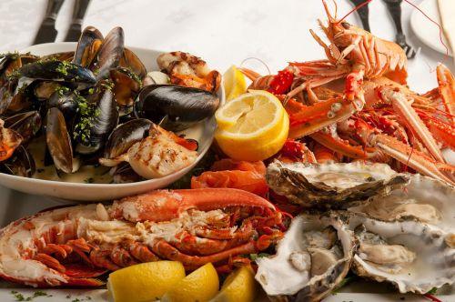 fish fishfood meal