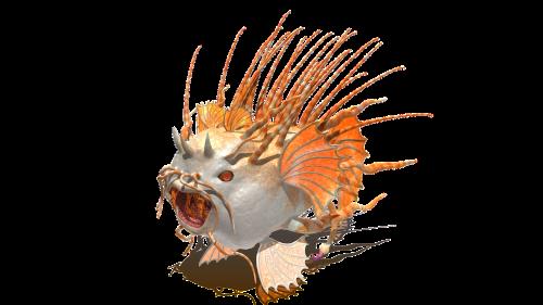 fish creature animal