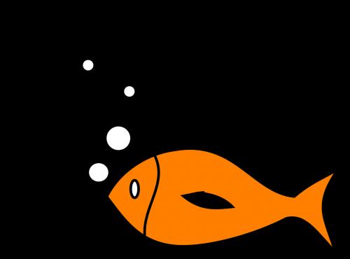 fish fishing hook