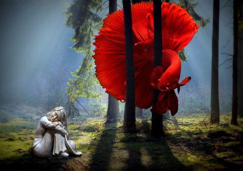 žuvis, betta žuvis, miškas, tamsi, šviesa, statula, svajingas, fantazija, svajonė, šešėliai, rūkas, menas, svajoti, betta, vandens, raudona, kontrastas, gamta, be honoraro mokesčio