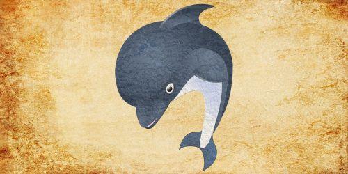fish shark ocean