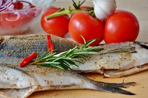 fish  sea bream  raw