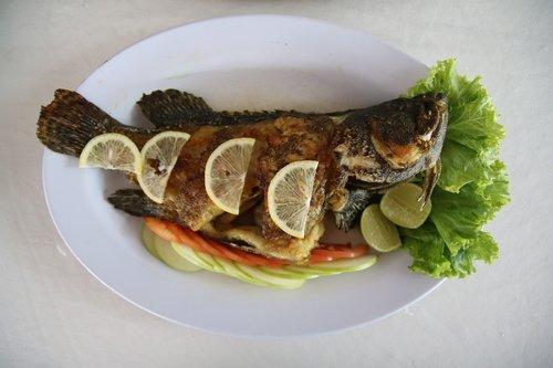 fish  grill  food