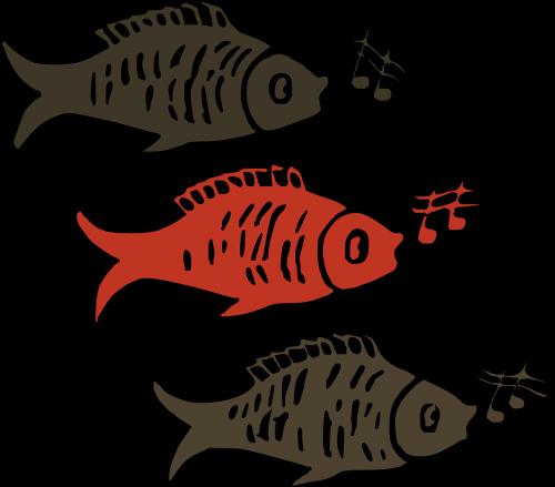 fish singing music