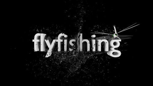 fish fly fishing catch fish