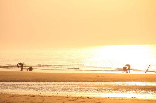 fish angler beach