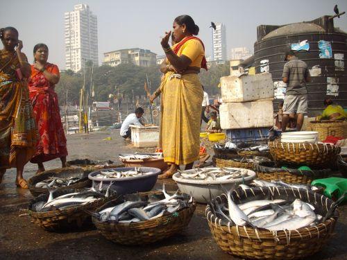 fish auction docks