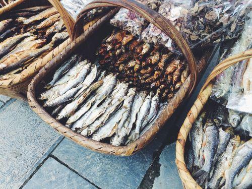 fish gourmet city