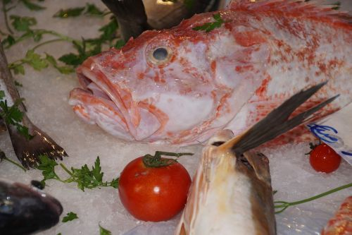 fish market palermo sicily