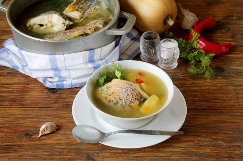 fish soup soup with pumpkin pike soup with pumpkin