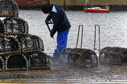 Fisherman Cleaning Creel Baskets