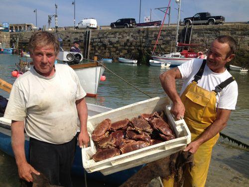 fishermen crabs newquay