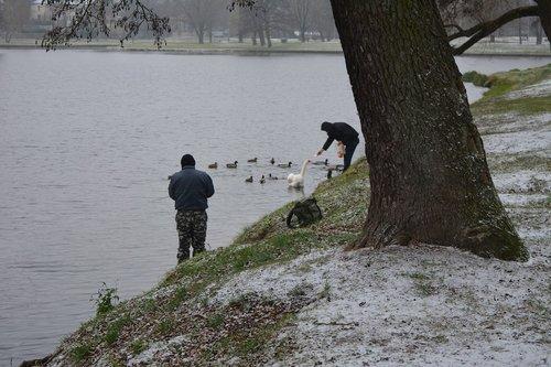 fishermen feeding birds  fishermen feeding birds in winter  fishermen feeding ducks