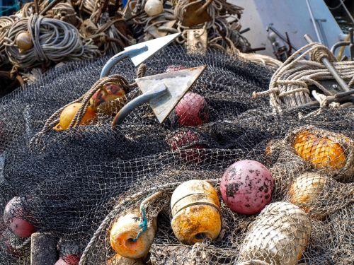 žvejyba,tinklas,jūra,inkaras,drobė,žuvis,saugos tinklas,žvejybos tinklas,žvejybos pramonė