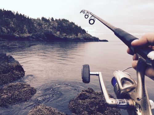 fishing reel casting
