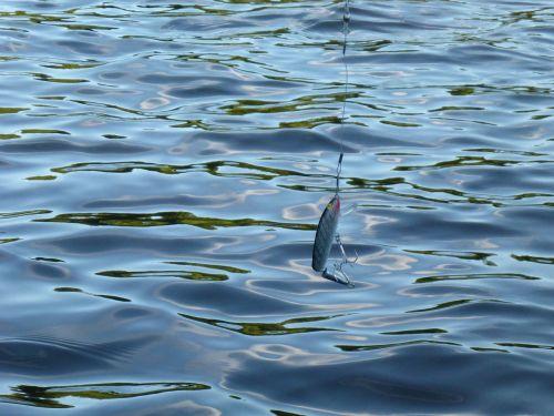 fishing lake recreation