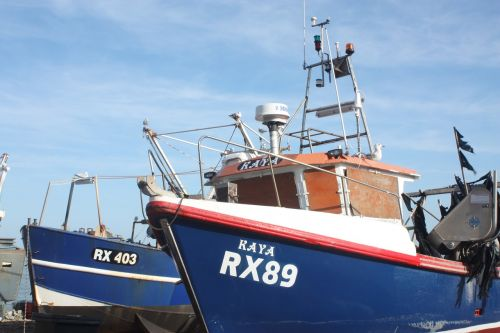 žvejyba,valtis,Hastings,mėlynas,kranto,papludimys,krantinė